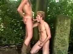 Forest Gay