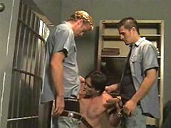 Every newcomer prisoner has to suck off gay guards