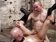 Sex Pigs : Alex Wegert, Mike French
