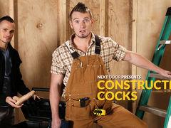 Constructive Cocks