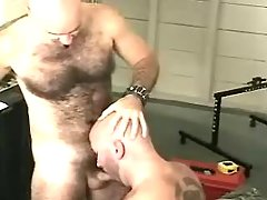 Mature gay sucks cock and licks hirsute hole