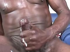 Firm black studs arrange wild orgy