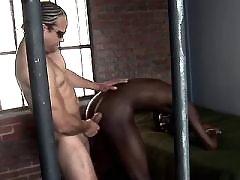 Hung like horses black gays fucking