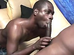 Black twink lovers in dirty anal fest