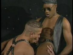 Shady Gangsta Gay
