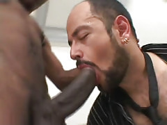 Hairy homosexual throats huge black dick