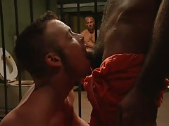Hairy gay man sucked by cellmate