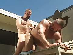 Mature muscle bears crazy fuck in doggy style
