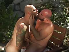 Bear gays kissing in nature