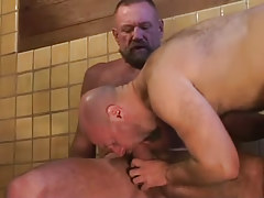 Bear dilf swallows hard wang of mature gay