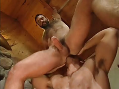 Bear gay licks stiff asshole in house hunting