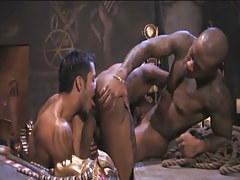 Interracial gays suck jocks and lick holes in archeological dig
