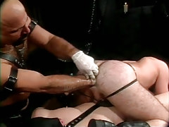 Mature bear man fistfucks hairy males hole in orgy