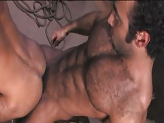 Bear Arabian man-lover fucks guy in doggy style