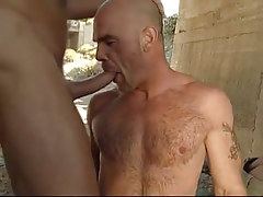 Bear gay deep mouths cock lower bridge