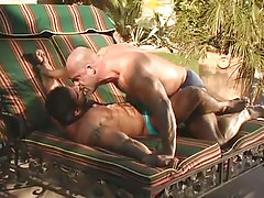 Mature muscle gays kiss per other outdoor