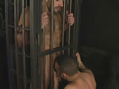 Hairy full-grown gay sucked in cage