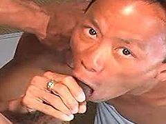 Oriental gays have a steamy oral session on the sofa