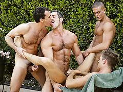 A steamy session of stick sucking, rimming, and group fucking
